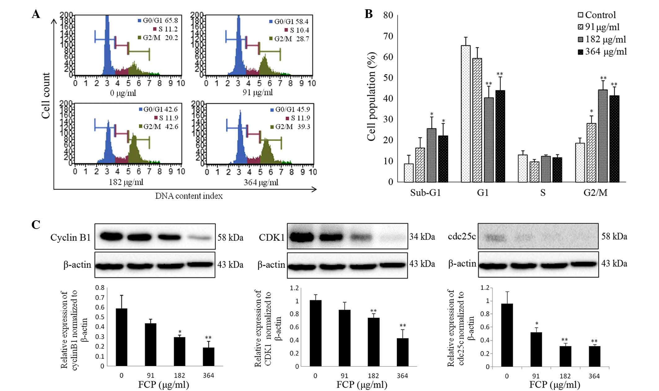 Flavonoids Isolated From Citrus Platymamma Induced G2 M Cell Cycle Arrest And Apoptosis In A549
