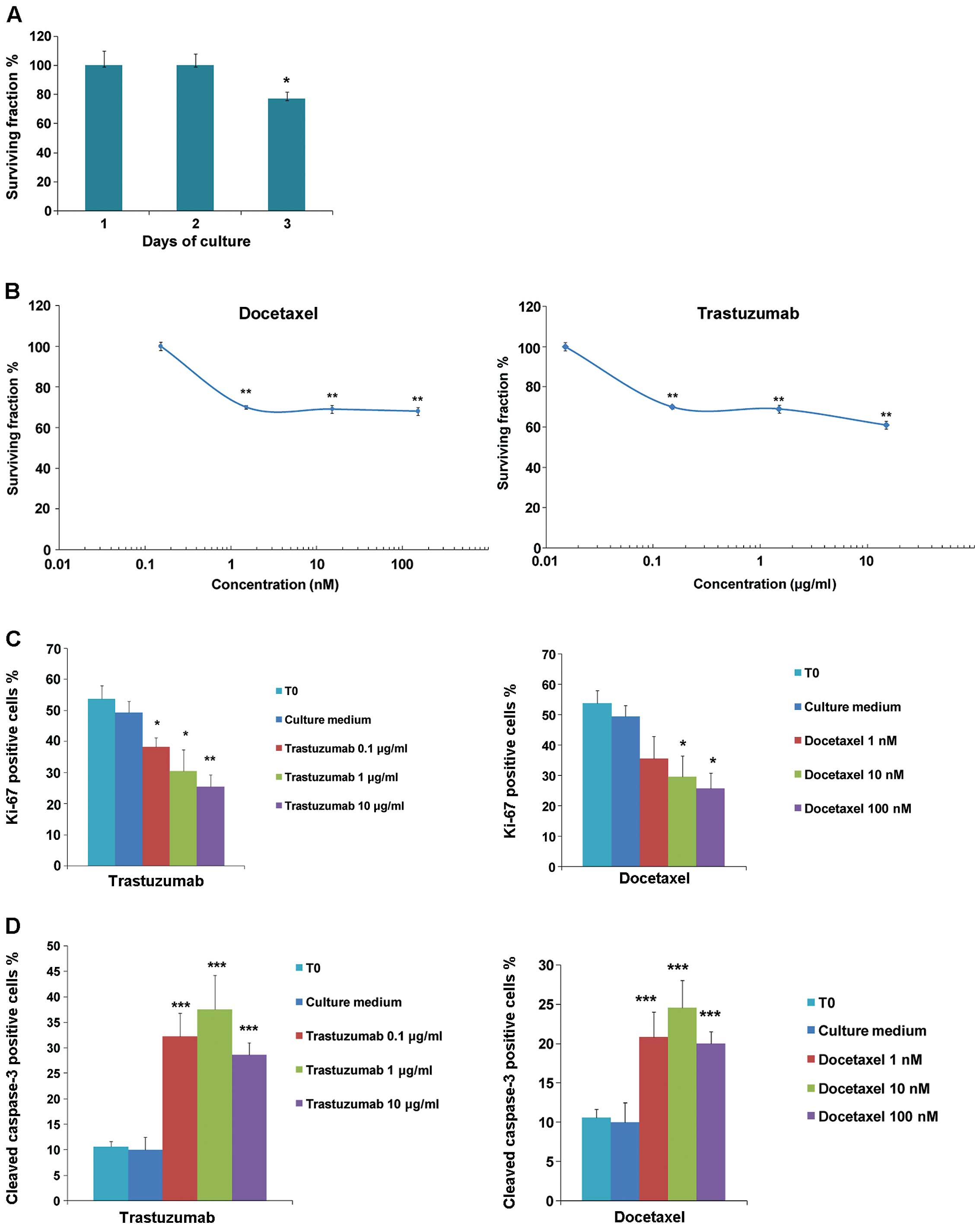 Trastuzumab And Docetaxel In A Preclinical Organotypic