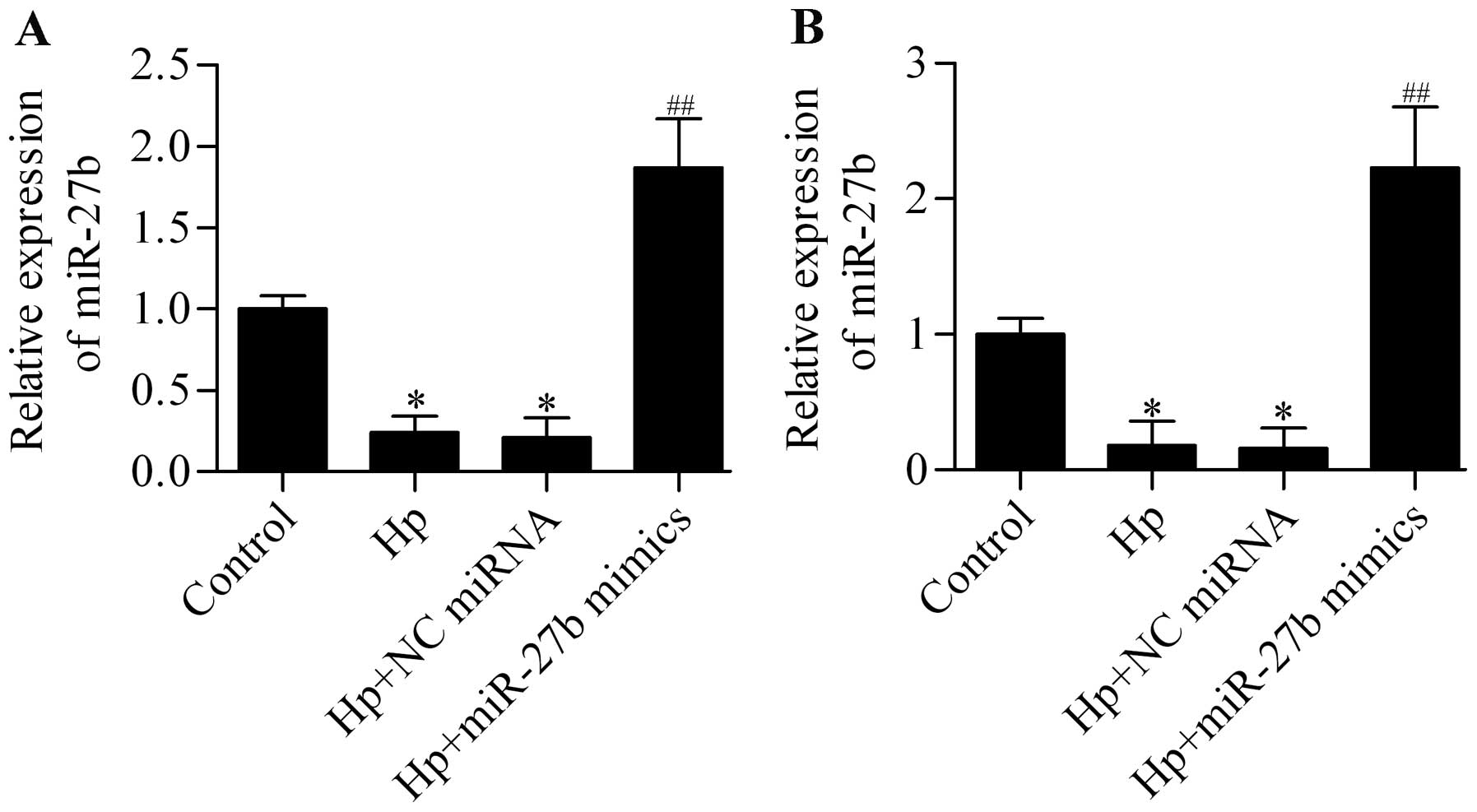 Microrna 27b Suppresses Helicobacter Pylori Induced