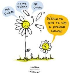 humor-espanol-chistes