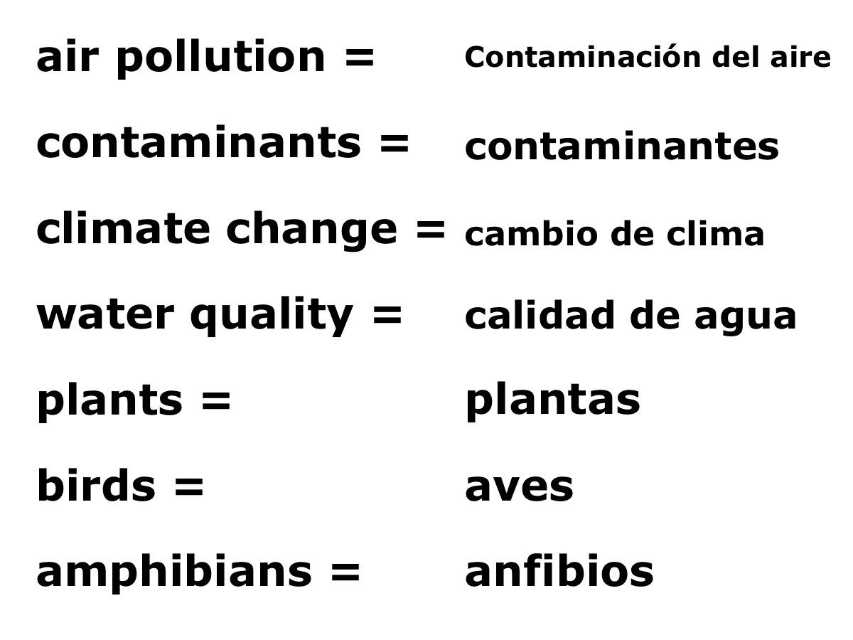 Ecology Diagram 2 Spanish4kiddos Educational Resources