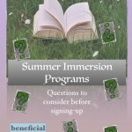 summer immersion programs