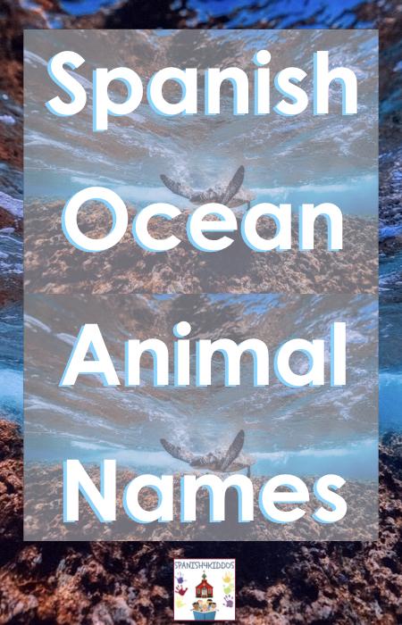 ocean animal names in Spanish
