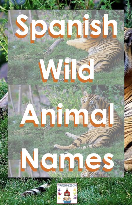 wild animal names