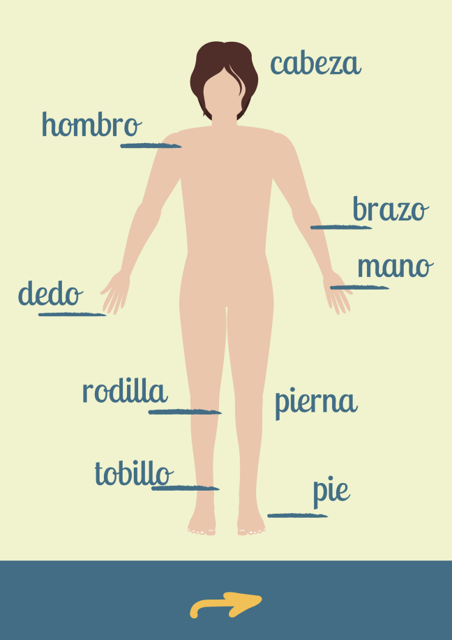 Your Body Spanish For The Camino