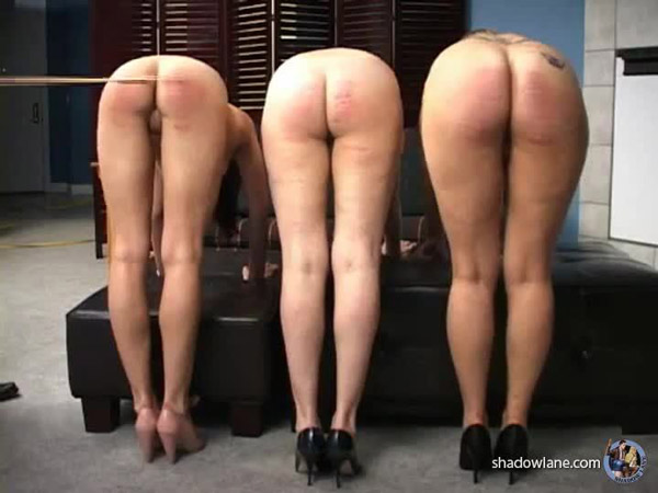 Three English bare bottoms get caned side-by-side
