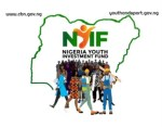 Nigeria Youth Investment Fund Registration Form 2020 – Apply Here