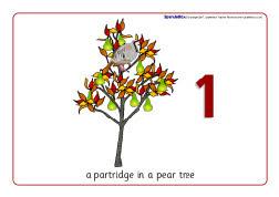Twelve Days Of Christmas Visual Aids SB1121 SparkleBox