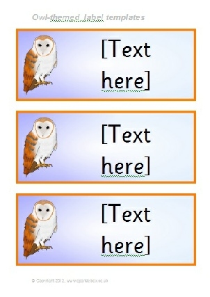 Owl Template For Classroom  classroom rules poster classroom