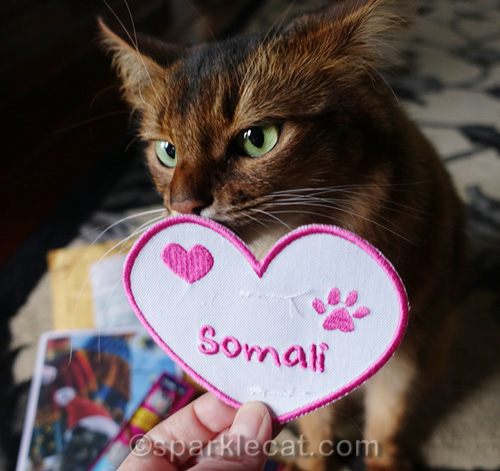 somali cat patch