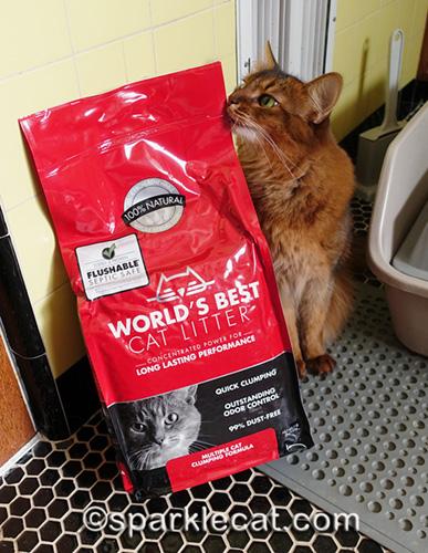 somali cat cheek rubbing World's Best Cat Litter bag