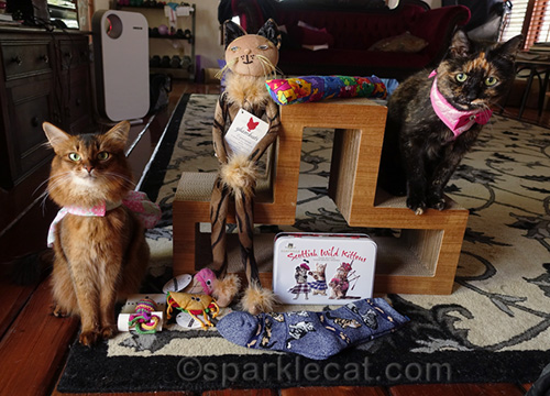 somali cat and tortoiseshell cat with Cat World Domination Day prize package
