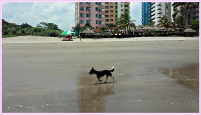 dogon beach