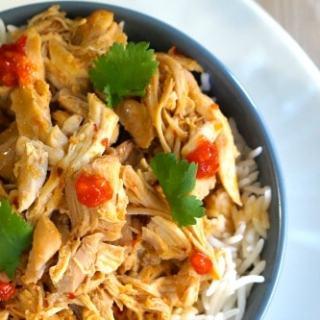 Gluten Free Slow Cooker Asian Shredded Chicken