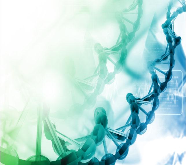 48 Strand DNA Upgrade