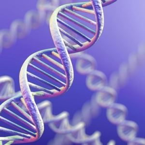 DNA Activations and Repair