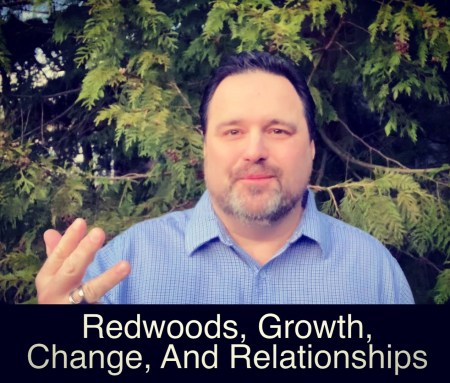 Redwoods, Growth, Change, and Relationships – From The Backyard Episode 11