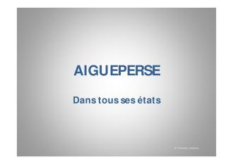 Méli-Mélo Aiguepersois