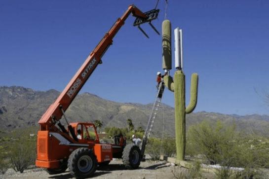 Antenne Cactus