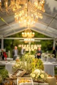 Matrimonio bio verde foglia a Villa Claudia dei Marchesi dal Pozzo 2