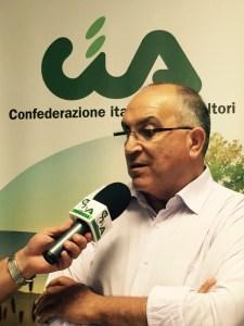 Michele Ferrandino (1)