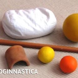 Fisioginnastica®