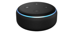 example of how families can monitor elderly loved ones with alexa device