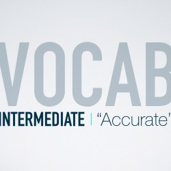 English Vocabulary in Use - Accurate