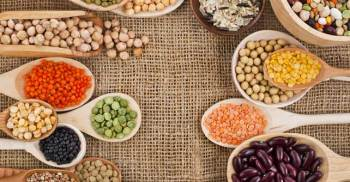 7 Elite Plant Based High Protein Foods to Build Muscle