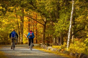 Cycling in fall