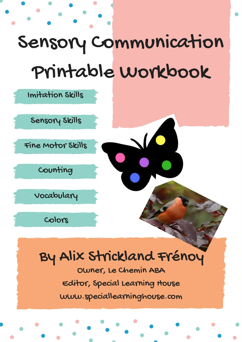 Sensory Communication Printable Workbook for Children with Autism
