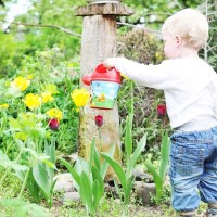 6 Tips to make gardening with children with autism easy & fun