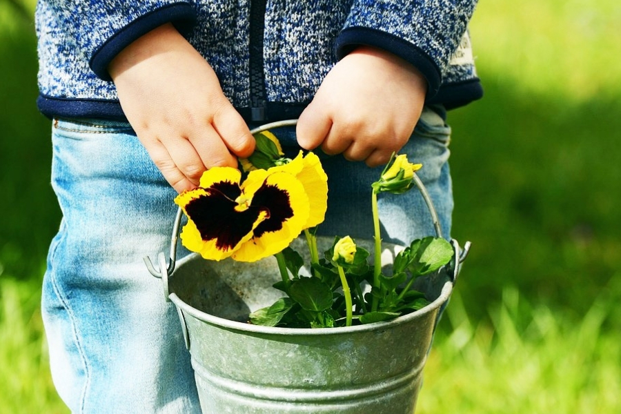 6 Tips to make gardening with children with autism easy & fun 5
