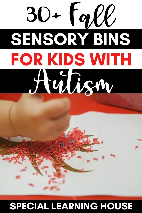 Fall Sensory Bins for Kids with Autism