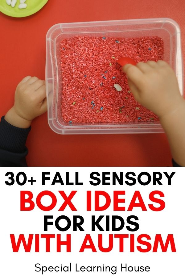 30 Fall Sensory Box Ideas