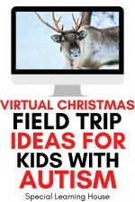 Virtual Christmas Field Trip Ideas