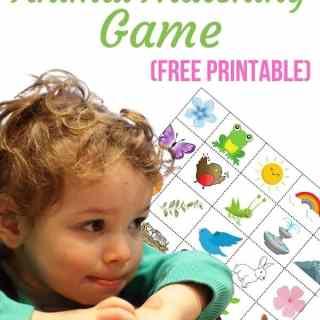 Printable Animal Matching Game