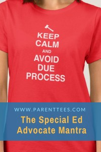 Keep Calm and Avoid Due Process T-shirt