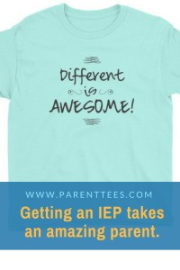 Different is Awesome special education t-shirt
