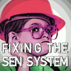 fixing the sen system