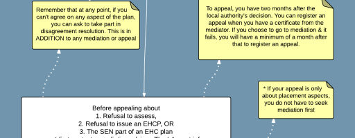 Day 4: The Flow Chart for if you disagree with SEN provision (or lack of it)