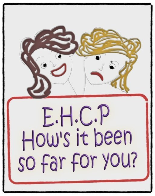 ehcp how is it for you?