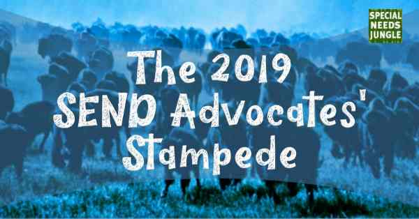 The 2019 SEND Advocates' Stampede