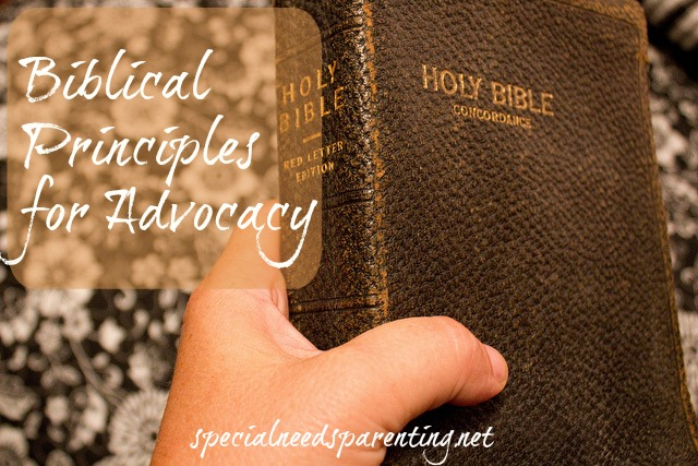 Biblical Principles for Advocacy from the Gospel of Luke and Acts