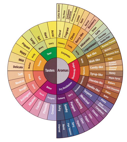 Coffee Flavor Wheel