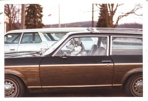 Uber Dogs - Olean, NY - 1975