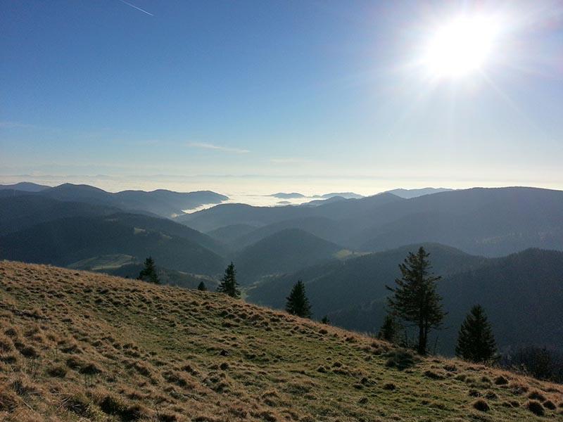 breisgau-hochschwarzwald