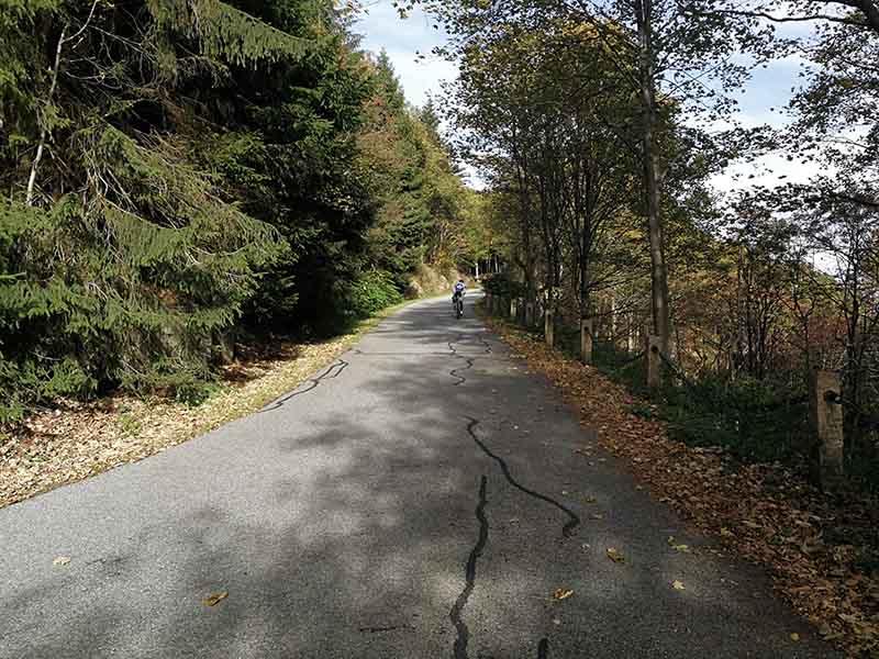 Stoneman Road