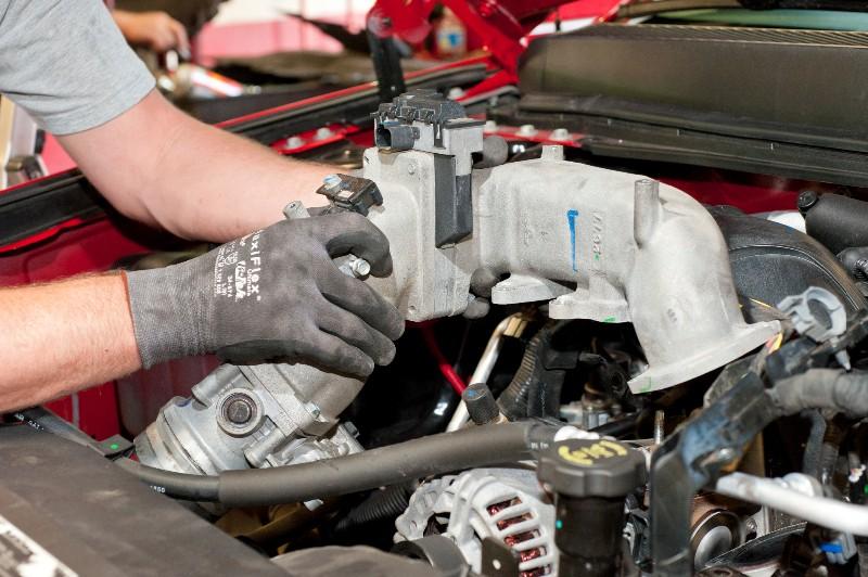 should delete your egr on your diesel