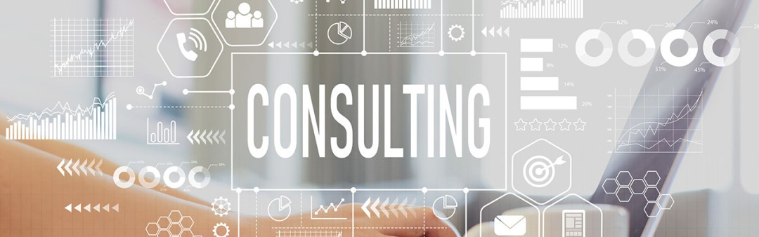 Consulting - Speed of Life